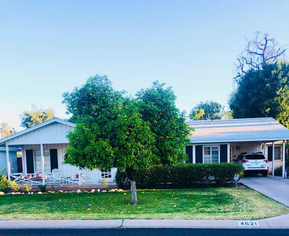 4621 E Lewis Avenue, Phoenix, AZ 85008 (MLS #6217792) :: Yost Realty Group at RE/MAX Casa Grande