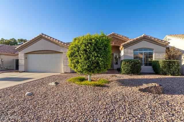 216 W Smoke Tree Road, Gilbert, AZ 85233 (MLS #6217796) :: Yost Realty Group at RE/MAX Casa Grande