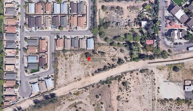 124 W Highline Canal Street, Phoenix, AZ 85041 (MLS #6217816) :: neXGen Real Estate