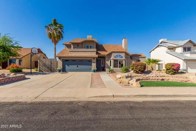 1620 E Paradise Lane, Phoenix, AZ 85022 (MLS #6217823) :: Yost Realty Group at RE/MAX Casa Grande