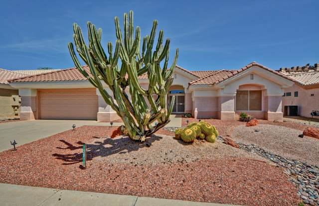13810 W Via Manana, Sun City West, AZ 85375 (MLS #6217839) :: Yost Realty Group at RE/MAX Casa Grande