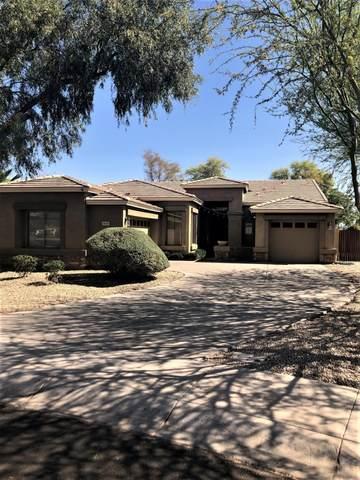 3639 S Colt Drive, Gilbert, AZ 85297 (MLS #6217847) :: Yost Realty Group at RE/MAX Casa Grande