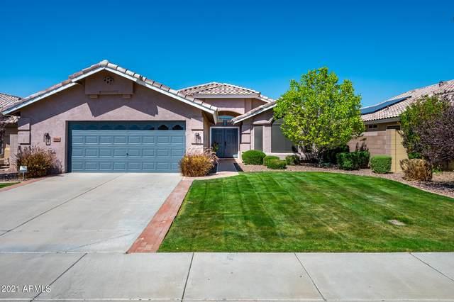 8806 W Wedgewood Drive, Peoria, AZ 85382 (MLS #6217865) :: Yost Realty Group at RE/MAX Casa Grande