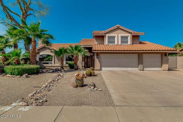 5602 E Acoma Drive, Scottsdale, AZ 85254 (MLS #6217928) :: Yost Realty Group at RE/MAX Casa Grande