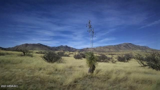 TBD Adams Ranch Road, Dragoon, AZ 85609 (MLS #6217964) :: Yost Realty Group at RE/MAX Casa Grande
