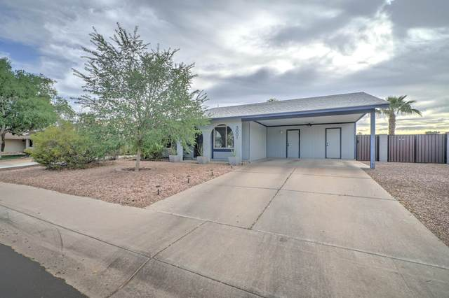 3001 N El Dorado Drive, Chandler, AZ 85224 (MLS #6218007) :: Keller Williams Realty Phoenix