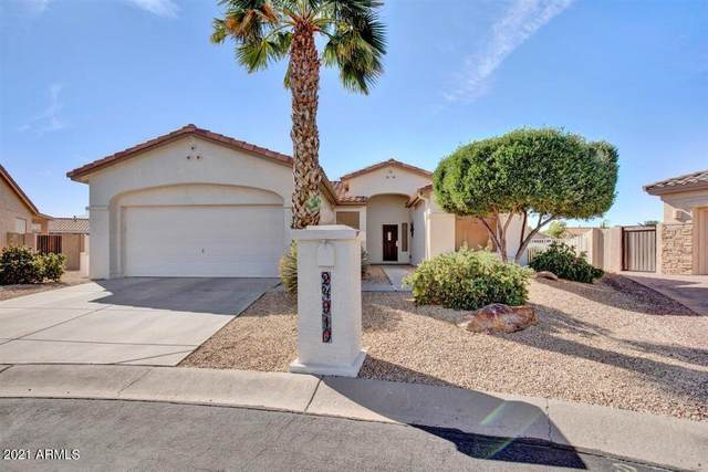 24910 S Mohawk Court, Sun Lakes, AZ 85248 (MLS #6218032) :: BVO Luxury Group