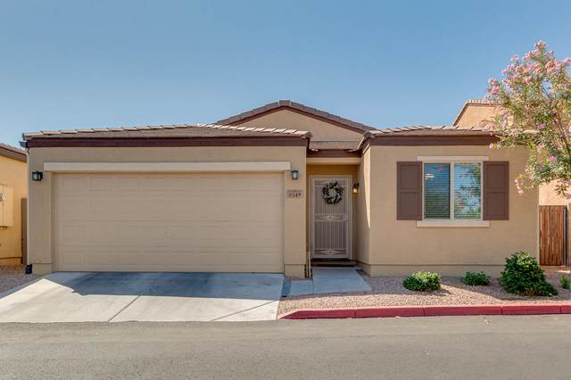 2565 E Southern Avenue #149, Mesa, AZ 85204 (MLS #6218060) :: Yost Realty Group at RE/MAX Casa Grande