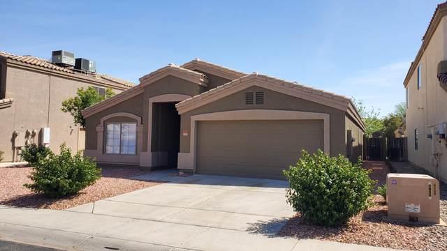 13001 W Gelding Drive, El Mirage, AZ 85335 (MLS #6218089) :: Yost Realty Group at RE/MAX Casa Grande