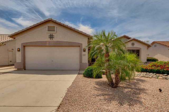 1431 E County Down Drive, Chandler, AZ 85249 (MLS #6218107) :: The Everest Team at eXp Realty