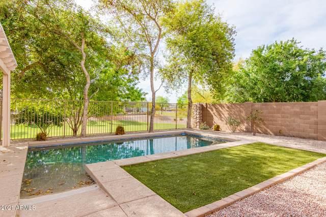4030 S Big Horn Place, Chandler, AZ 85249 (MLS #6218133) :: Keller Williams Realty Phoenix