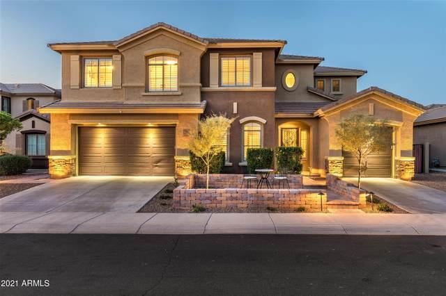2220 W Shackleton Drive, Phoenix, AZ 85086 (MLS #6218141) :: Yost Realty Group at RE/MAX Casa Grande