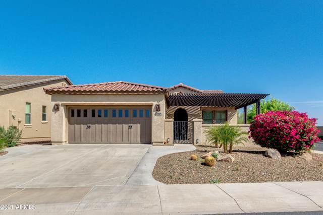 12336 W Pinnacle Vista Drive, Peoria, AZ 85383 (MLS #6218214) :: Maison DeBlanc Real Estate
