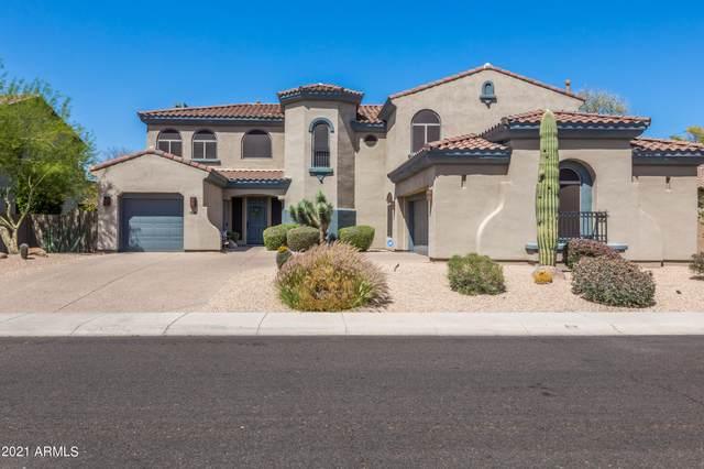 3734 E Adobe Drive, Phoenix, AZ 85050 (MLS #6218238) :: The Newman Team