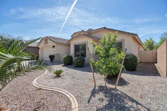1367 W Holstein Trail, San Tan Valley, AZ 85143 (MLS #6218247) :: Yost Realty Group at RE/MAX Casa Grande