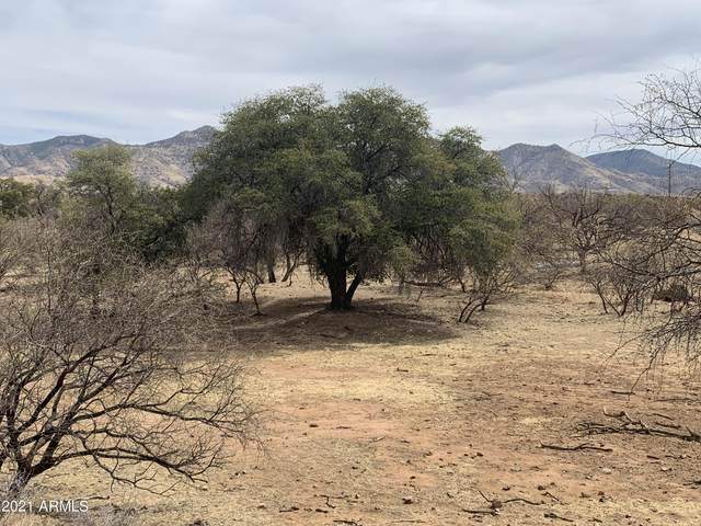 43.93 Acre San Gabriel Drive, Patagonia, AZ 85624 (MLS #6218256) :: BVO Luxury Group