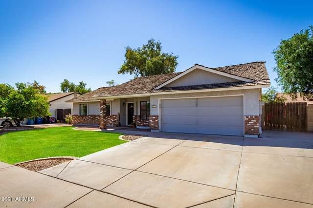 461 E San Pedro Avenue, Gilbert, AZ 85234 (MLS #6218278) :: Yost Realty Group at RE/MAX Casa Grande
