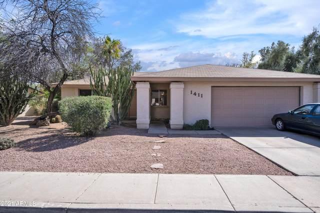 1411 W Impala Avenue, Mesa, AZ 85202 (MLS #6218279) :: Yost Realty Group at RE/MAX Casa Grande