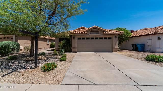 16631 N 59th Street, Scottsdale, AZ 85254 (MLS #6218288) :: Yost Realty Group at RE/MAX Casa Grande