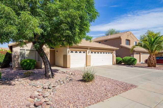3446 S Joshua Tree Lane, Gilbert, AZ 85297 (MLS #6218292) :: Executive Realty Advisors