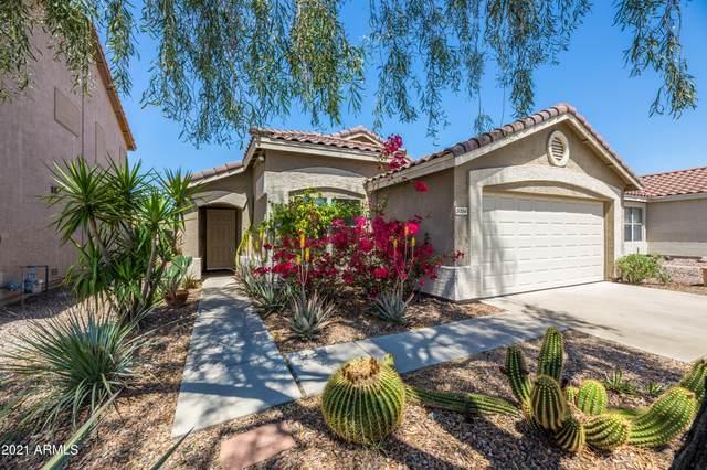 5004 E Peak View Road, Cave Creek, AZ 85331 (MLS #6218306) :: The Property Partners at eXp Realty