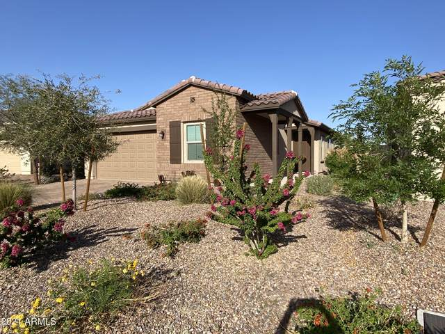 819 S 201ST Drive, Buckeye, AZ 85326 (MLS #6218371) :: Yost Realty Group at RE/MAX Casa Grande
