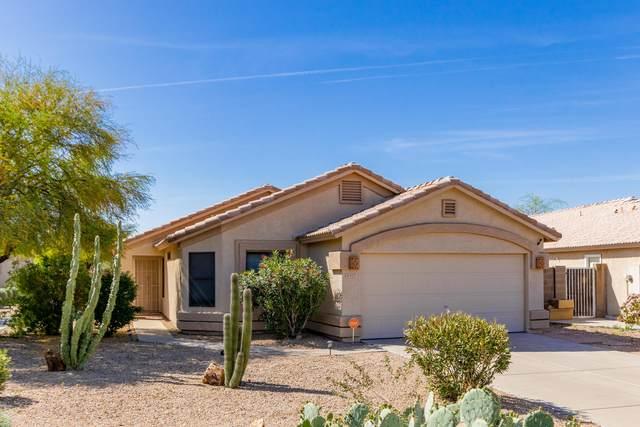 9227 W Cinnabar Avenue, Peoria, AZ 85345 (MLS #6218377) :: Yost Realty Group at RE/MAX Casa Grande