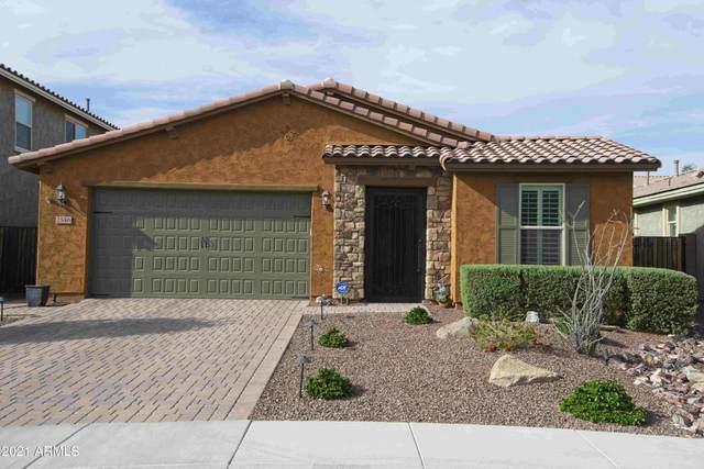2546 W Perola Drive, Phoenix, AZ 85085 (MLS #6218416) :: Yost Realty Group at RE/MAX Casa Grande