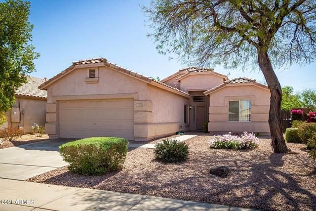 10749 W Granada Road, Avondale, AZ 85392 (MLS #6218420) :: Yost Realty Group at RE/MAX Casa Grande