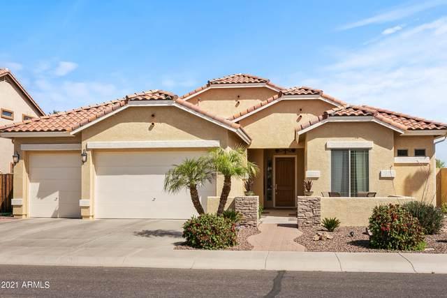 3502 E Fandango Drive, Gilbert, AZ 85298 (MLS #6218428) :: Yost Realty Group at RE/MAX Casa Grande