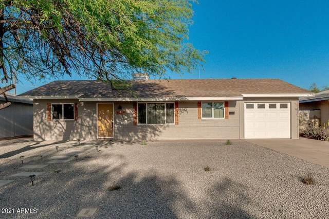 2217 N 28TH Place, Phoenix, AZ 85008 (MLS #6218446) :: Yost Realty Group at RE/MAX Casa Grande