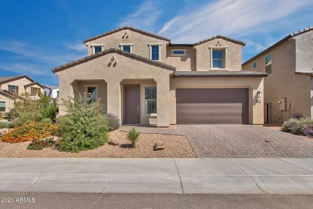 6504 E Rose Marie Lane, Phoenix, AZ 85054 (MLS #6218452) :: Yost Realty Group at RE/MAX Casa Grande