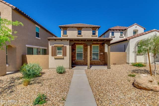2929 N Athena, Mesa, AZ 85207 (MLS #6218510) :: Yost Realty Group at RE/MAX Casa Grande