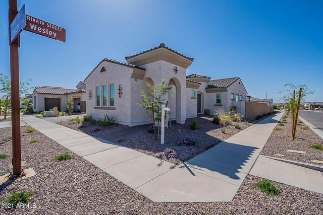 10207 E Thatcher Avenue, Mesa, AZ 85212 (MLS #6218513) :: Arizona Home Group