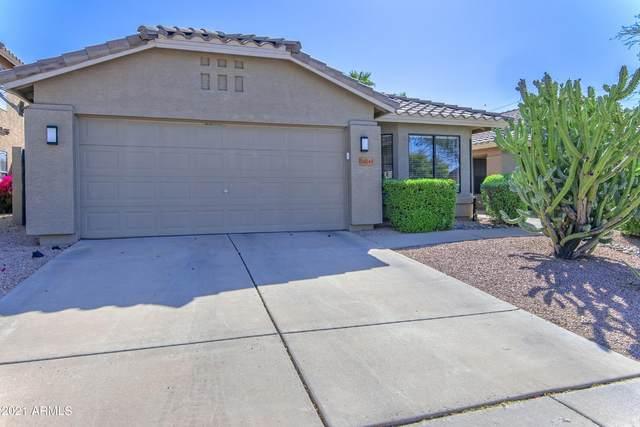 20243 N 34TH Street, Phoenix, AZ 85050 (MLS #6218538) :: Yost Realty Group at RE/MAX Casa Grande
