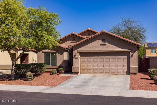 18168 W Sanna Street, Waddell, AZ 85355 (MLS #6218544) :: Yost Realty Group at RE/MAX Casa Grande