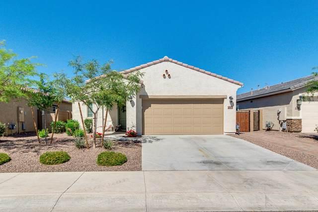 21374 W Monte Vista Road, Buckeye, AZ 85396 (MLS #6218545) :: Long Realty West Valley
