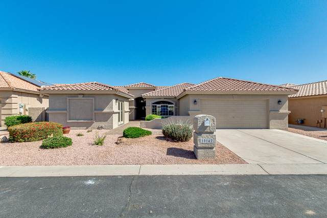10142 E Lambert Drive, Sun Lakes, AZ 85248 (MLS #6218547) :: Yost Realty Group at RE/MAX Casa Grande