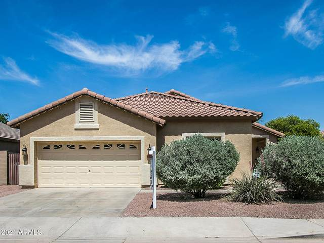 4252 E Torrey Pines Lane, Chandler, AZ 85249 (MLS #6218555) :: Yost Realty Group at RE/MAX Casa Grande
