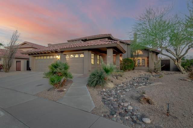 3137 E Rock Wren Rd, Phoenix, AZ 85048 (MLS #6218599) :: Yost Realty Group at RE/MAX Casa Grande