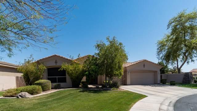 4343 S Ambrosia Court, Chandler, AZ 85248 (MLS #6218642) :: Keller Williams Realty Phoenix