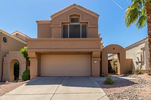 15862 S 11TH Place, Phoenix, AZ 85048 (MLS #6218653) :: Yost Realty Group at RE/MAX Casa Grande