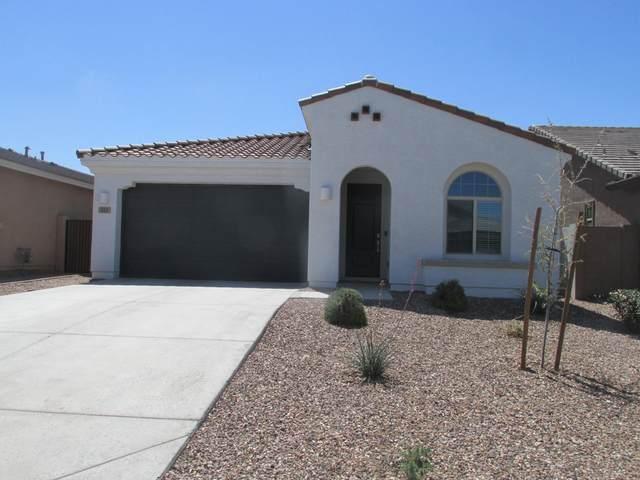 313 W Rainbow  Bridge Lane, San Tan Valley, AZ 85140 (MLS #6218684) :: Executive Realty Advisors