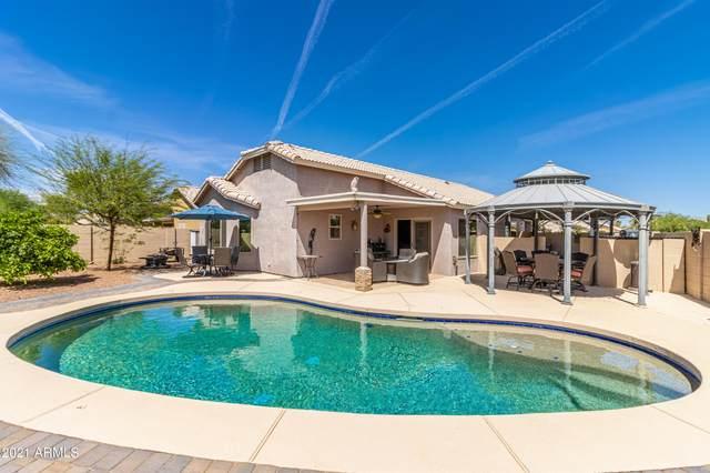 1541 E Peregrine Trail, Casa Grande, AZ 85122 (MLS #6218733) :: Yost Realty Group at RE/MAX Casa Grande