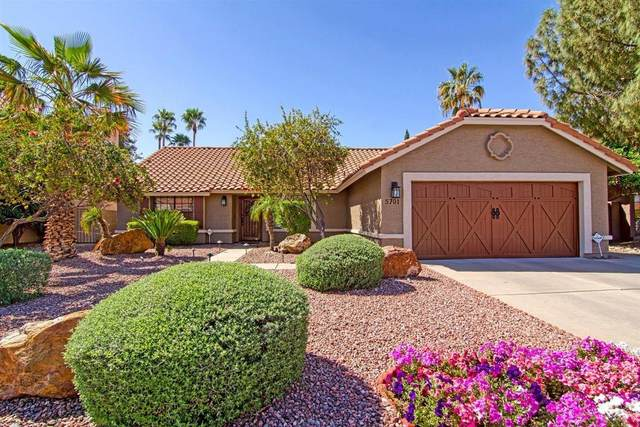 5701 E Angela Drive, Scottsdale, AZ 85254 (MLS #6218782) :: Yost Realty Group at RE/MAX Casa Grande