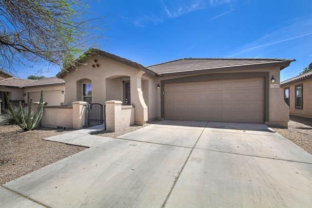 21934 E Creosote Court, Queen Creek, AZ 85142 (MLS #6218815) :: Yost Realty Group at RE/MAX Casa Grande