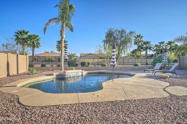 21171 E Stirrup Street, Queen Creek, AZ 85142 (MLS #6218835) :: BVO Luxury Group