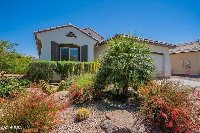 2313 N Presidential Drive, Florence, AZ 85132 (MLS #6218917) :: Hurtado Homes Group