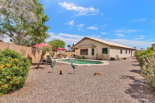 16222 N 162ND Drive, Surprise, AZ 85374 (MLS #6218928) :: Yost Realty Group at RE/MAX Casa Grande