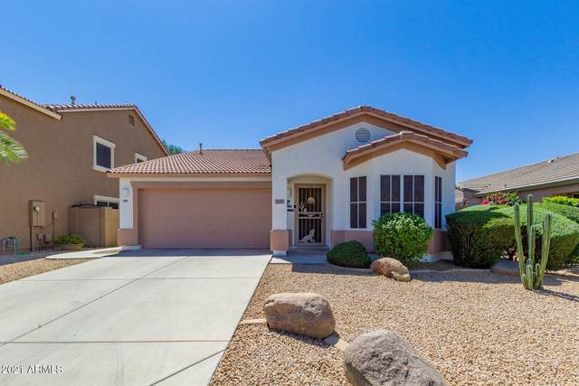 15141 W Riviera Drive, Surprise, AZ 85379 (MLS #6218995) :: Yost Realty Group at RE/MAX Casa Grande